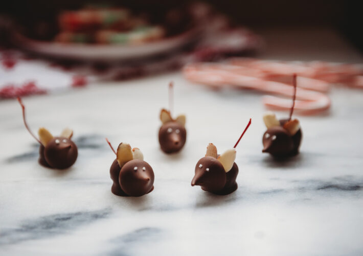 Cherry Chocolate Mice