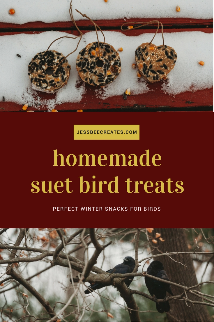 homemade suet bird feeder